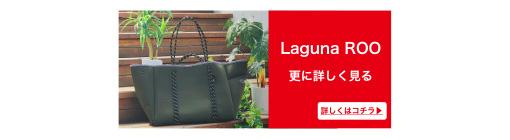 banner_Laguna_ROO_Details2.jpg