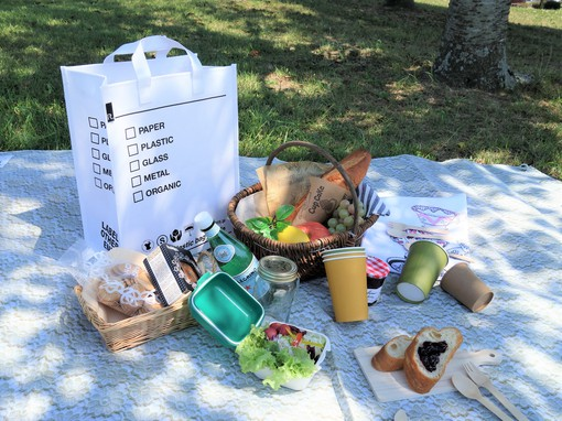 RG_picnic.jpg