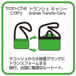 tran-che_carry_w510.jpg