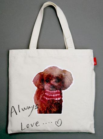 愛犬のかばん